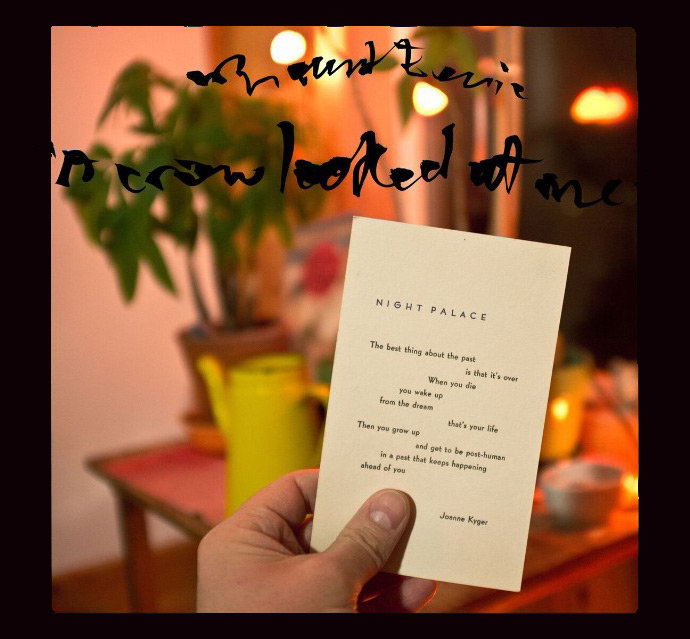 Mount Eerie ‒ «A Crow Looked at Me»